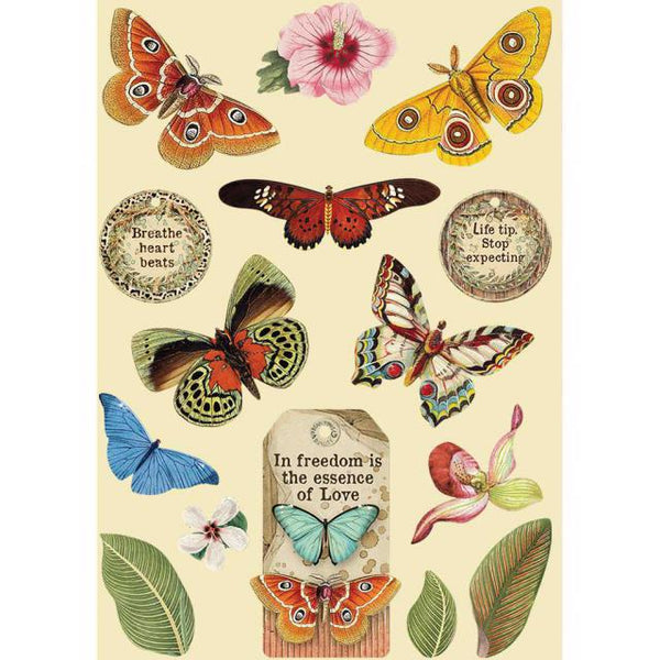 STAMPERIA - CHIPBOARD - COLOURED WOODEN FRAME A5 - AMAZONIA BUTTERFLIES