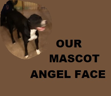 AngelFace: Our Mascot Dog
