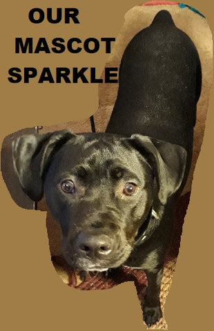 Sparkle: Our Mascot Dog