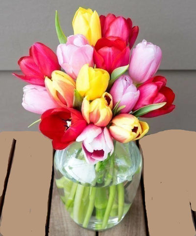 Morning Sunshine Tulips Flower Bouquet- 15 Buds - Voiceopin International: Child Abuse Information & Online Shopping Center