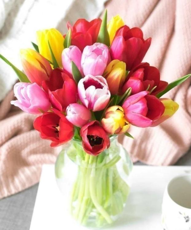 Morning Sunshine Tulips Flower Bouquet- 20 Stems - Voiceopin International: Child Abuse Information & Online Shopping Center