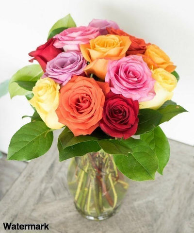 One Dozen Mixed Color Roses - Voiceopin International: Child Abuse Information & Online Shopping Center