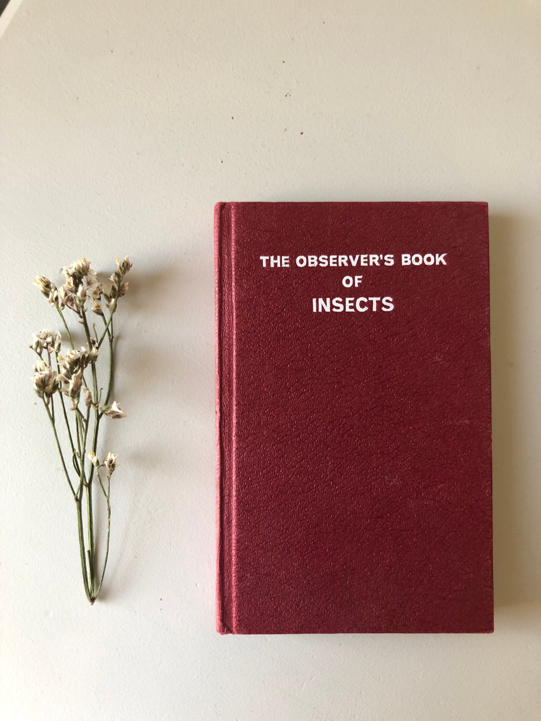 NEW - Observer Book of Insects