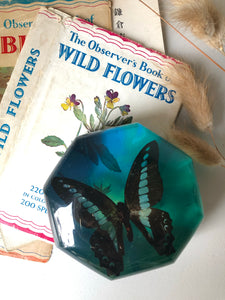Vintage Octagonal Butterfly Paperweight