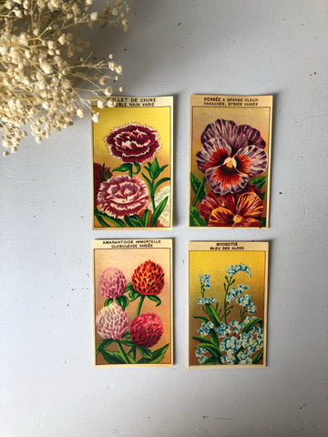 Set of Four Original French Flower Seed Labels, Forget Me Not
