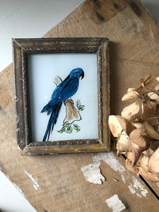 Antique Reverse Glass Painting, Parrot
