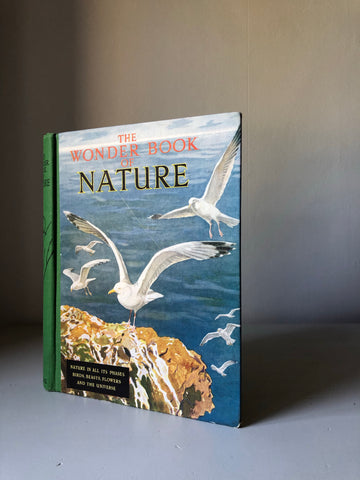 Vintage 'The Wonder Book of Nature'