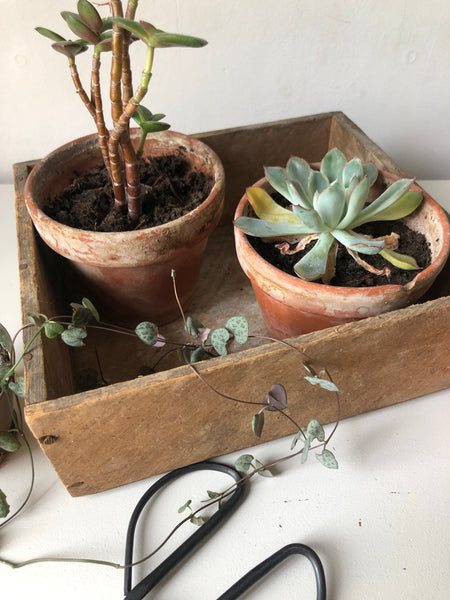 Rustic Wooden Crate Box