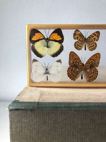 Vintage Butterfly Resin Block