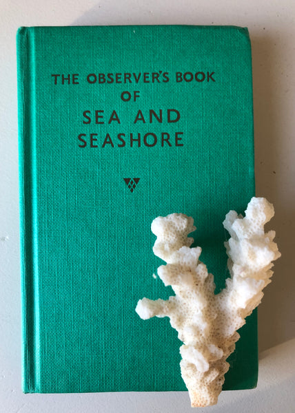 Observer book of Sea and Seashore