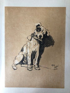 Original Cecil Aldin Dog Bookplate, Collar