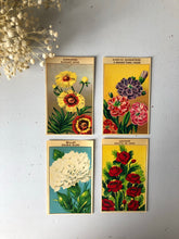 Load image into Gallery viewer, Set of Four Original French Flower Seed Labels, Pheasants Eye