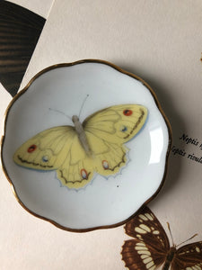 Small vintage Butterfly Dish