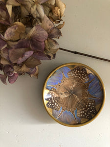 Vintage Butterfly Wing Trinket Dish