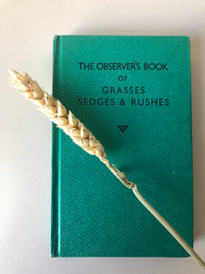 NEW - Observer Book of Grasses, Sedges, & Rushes