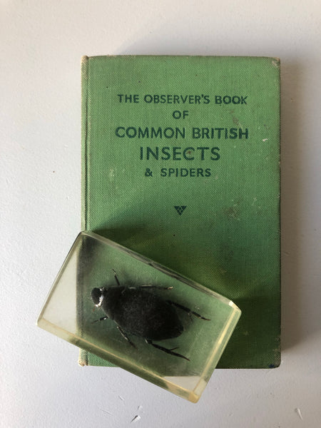 Observer Book of Common Insects and spiders