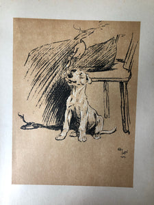 Cecil Aldin Dog Bookplate, Spoon treat