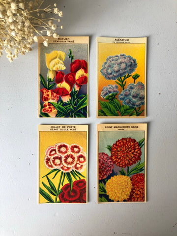 Set of Four Original French Flower Seed Labels, Snapdragon
