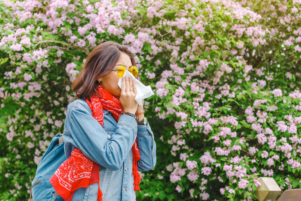 The Best Flowers For People With Allergies