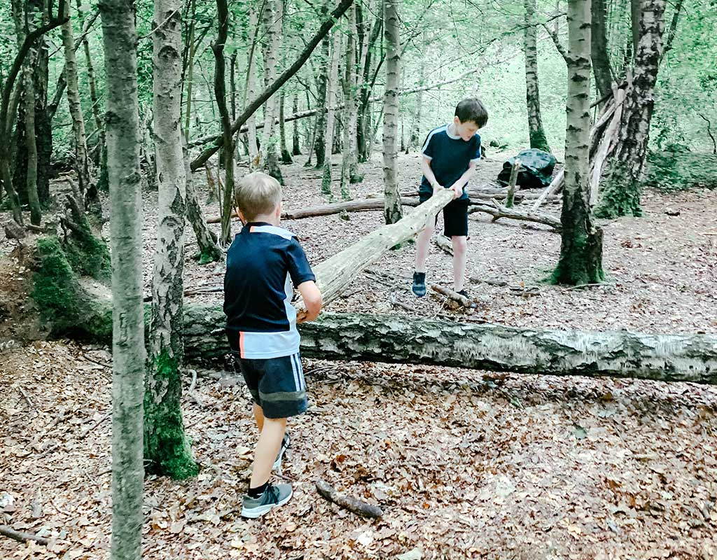Two boys carrying a tree branch through Blackwood Forest, Winchester, Hampshire
