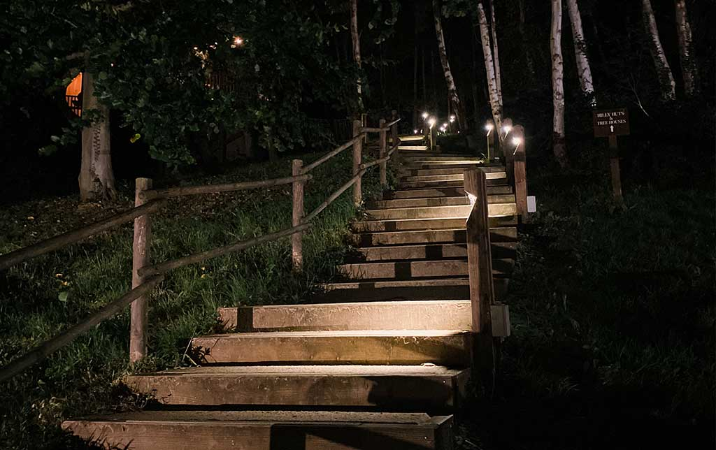 Steps to the Treehouses