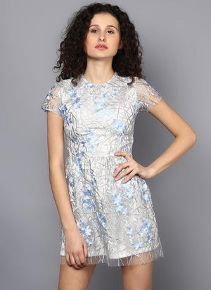Floral Embroidered Net Dress
