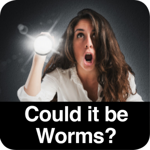 Could it be Worms? Video Presentation by Naturopath Rachel Arthur