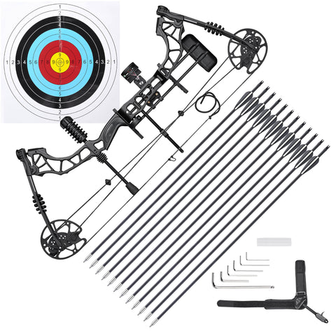 70 Lbs Pro Compound Bow Kit Right Hand Target Practice Hunting Arrow Archery Man