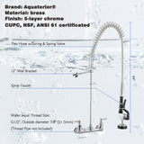 Aquaterior® Chrome Double Handle Brass Pre-Rinse Commercial