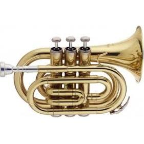 Stagg Ws-Tr245 Bb Pocket Trumpet With Case - Red One Music