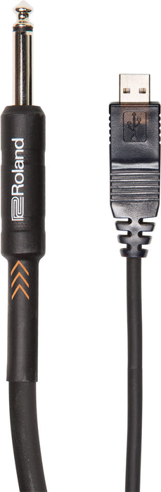 "Roland RCC-10-US14 Black Series 1/4"" TS Male to USB Cable - 10'"