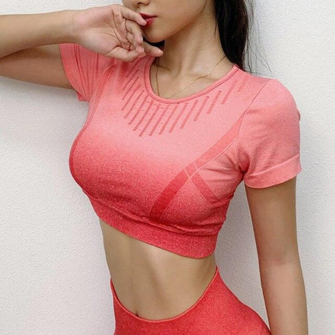 Women Seamless Yoga Shirts