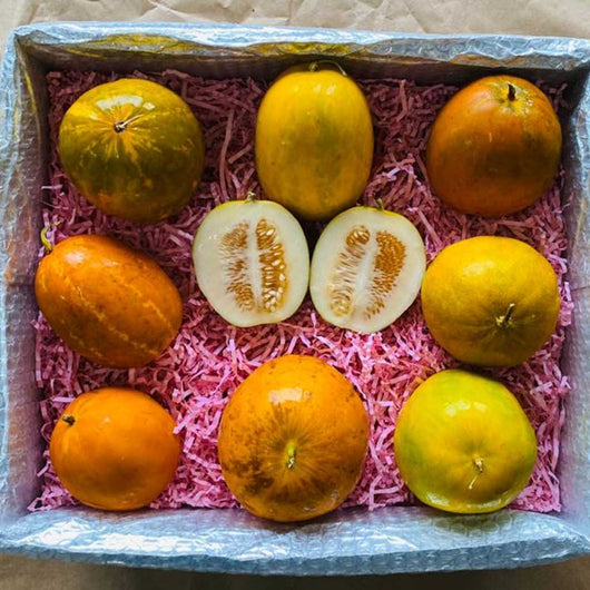 Dosakai Melon Box