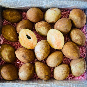 Fresh Sapodilla | Nispero Box Tropical Fruit Box Large