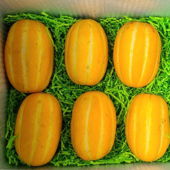 Korean Melon Box Tropical Fruit Box 00879502002863