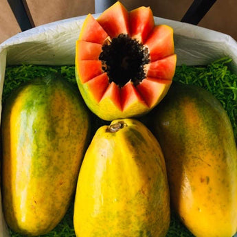 Tropical Fresh Papaya Box Tropical Fruit Box Produce Box 00879502008438
