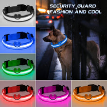 Load image into Gallery viewer, Anti Accident LED Collar