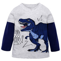 Boys Dinosaur Long Sleeve T Shirt
