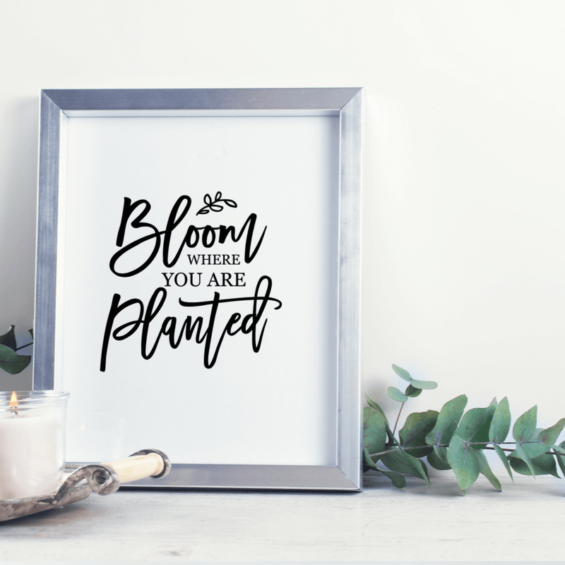 Bloom Where You Are Planted Wall Art Print
