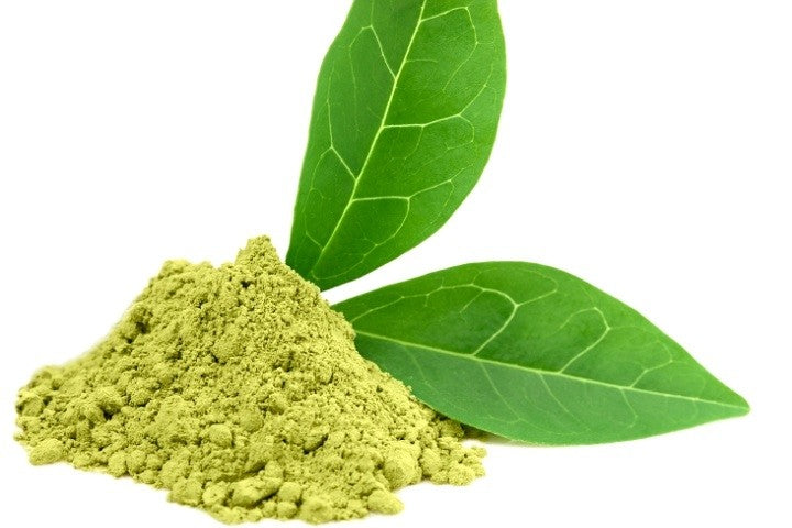 Benefits of Green Tea Extract