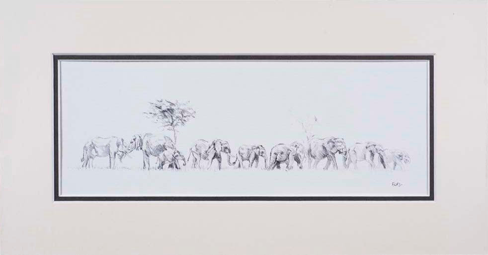Elephant family limited edition print