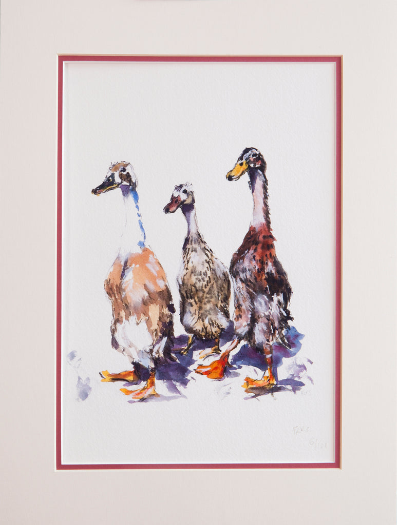 Runner ducks limited edition print