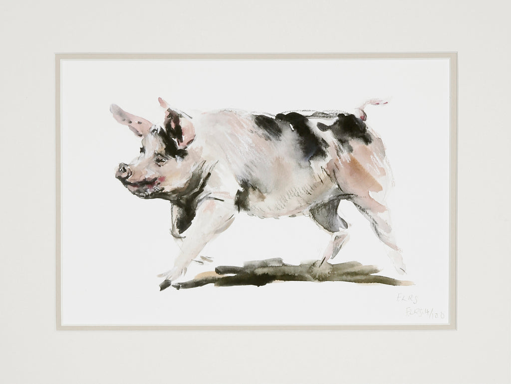 Running pig, limited edition print