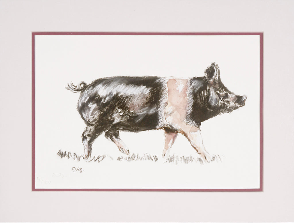 Trotting pig limited edition print