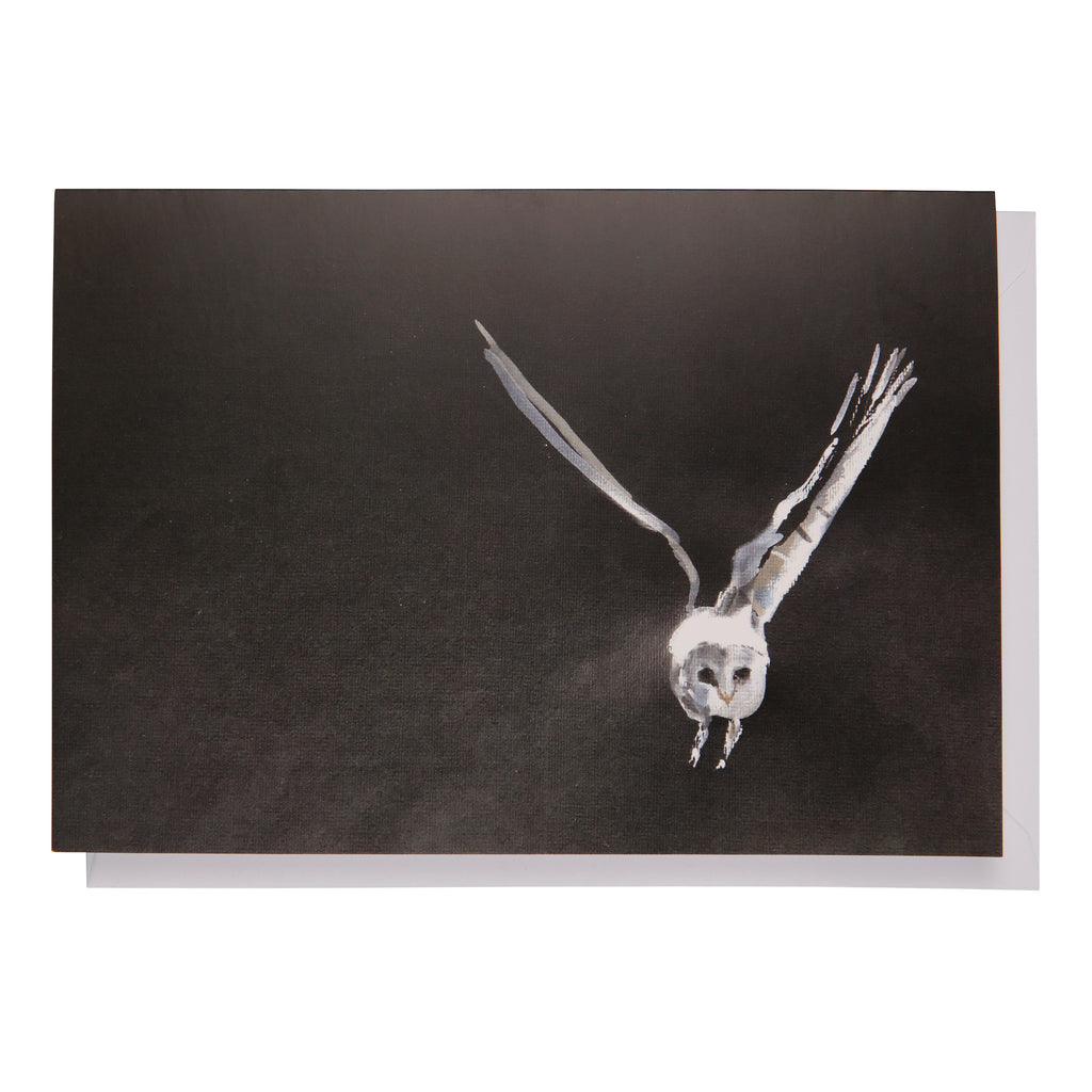 Greeting card: Barn owl