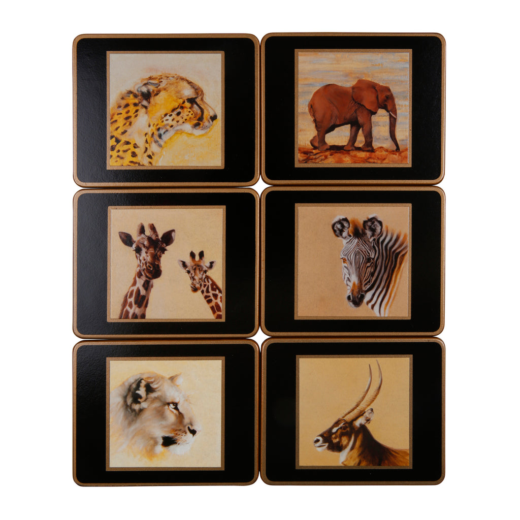 Set of 6 coasters (Set 2)
