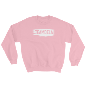 TEAMDELA™ BABY PINK SWEATER