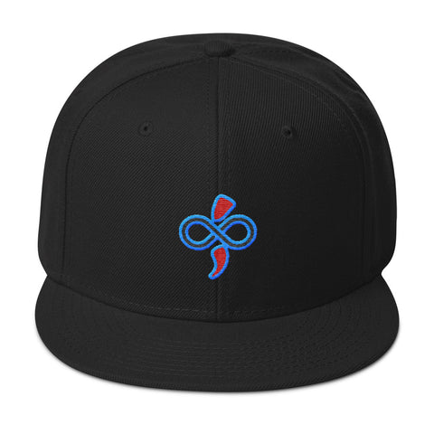 Women's & Men's Custom Designed Logo Embroidered Hats The SoLogan Snapback Hat