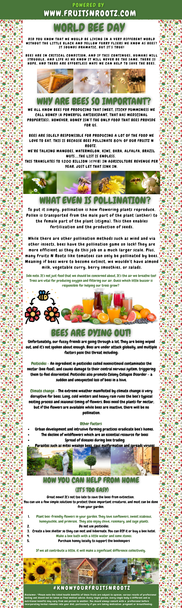 Fruits N Rootz | World Bee Day