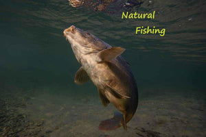 naturalfishing